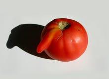 GEK VOEDSEL met gebrekkig grappige tomaat stock fotografie