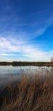 Gekalmeerd meer met ontzagwekkende blauwe hemel Royalty-vrije Stock Foto's
