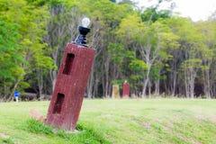 Gekippter heller Pfosten im grünen Garten Stockfotografie