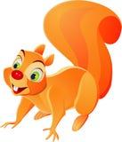 Gekke eekhoorn stock illustratie