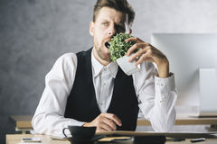 Gekke zakenman die installatie eten stock foto