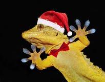Gekko met de hoed en de vlinderdas van de Kerstman die iedereen begroet royalty-vrije stock afbeelding