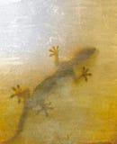 Gekko shadows. Gekko grunge textured square background stock images