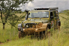 Gekkoparel Groen Jeep Wrangler Rubicon royalty-vrije stock afbeelding