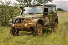 Gekkoparel Groen Jeep Wrangler Rubicon stock afbeelding