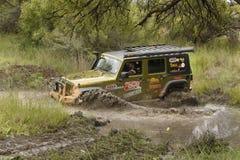 Gekkoparel Groen Jeep Wrangler Rubicon stock foto