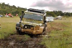 Gekkoparel Groen Jeep Wrangler Rubicon stock foto's
