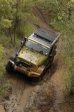 Gekkoparel Groen Jeep Wrangler Rubicon royalty-vrije stock fotografie
