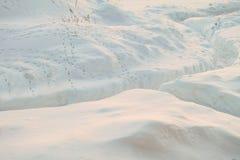 Geklärter schneebedeckter Fußweg nach schwerem Schneesturm Spuren von wilden Steppenvögeln auf dem Schnee Stockfotos