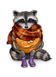 Geklede wasbeer met mandarin illustratie Stock Afbeeldingen