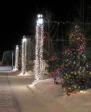 Gekleideter Weihnachtsbaumabschluß oben auf der Straße. Lizenzfreies Stockfoto