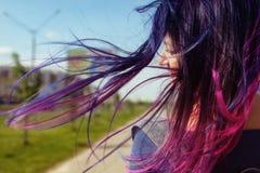 Gekleurd blauw en roze haarmeisje in de wind achtermening royalty-vrije stock fotografie