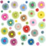 Gekleurd bloemenpatroon op wit Royalty-vrije Stock Afbeelding