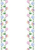 Gekleurd bloemkader Stock Fotografie