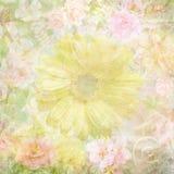 Gekleurd grungy bloembehang stock illustratie