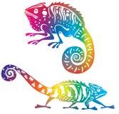 Gekleurd kameleon stock illustratie