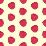 Gekleurd naadloos patroon met framboos Vector illustratie Modern vlak ontwerp Stock Fotografie