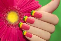 Gekleurd nagellak Royalty-vrije Stock Foto's