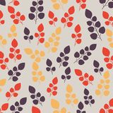 Gekleurd patroon op bladerenthema Autumn Pattern Royalty-vrije Stock Fotografie