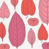 Gekleurd patroon op bladerenthema Autumn Pattern Stock Afbeelding