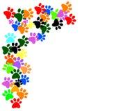 Gekleurd pawprints op witte achtergrond vector illustratie