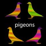 Gekleurd vogelsilhouet Royalty-vrije Stock Afbeeldingen