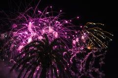 Gekleurd vuurwerk tijdens de nacht Stock Afbeelding