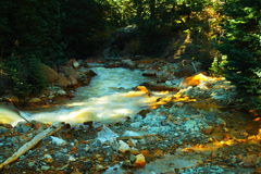 Gekleurd water Stock Afbeelding