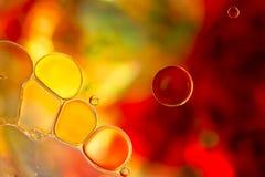 Gekleurde Bellen op Waterspiegel Stock Fotografie