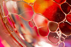 Gekleurde Bellen op Waterspiegel Stock Foto's