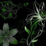 Gekleurde bloemornamenten Royalty-vrije Stock Afbeeldingen