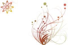 Gekleurde bloemornamenten Stock Foto's