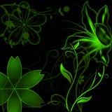 Gekleurde bloemornamenten Stock Afbeeldingen