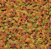 Gekleurde cornflakesringen stock foto