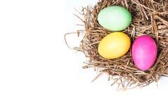 Gekleurde eieren in mand met hooi Stock Foto