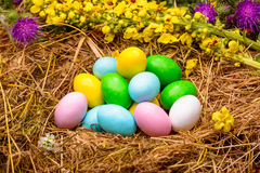 Gekleurde Eieren in Nest Stock Afbeeldingen