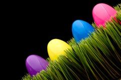 Gekleurde eieren op gras Stock Afbeeldingen