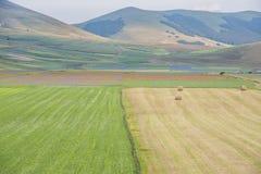 Gekleurde gebieden met balen in Piano Grande, Monti Sibillini NP, U Royalty-vrije Stock Afbeelding