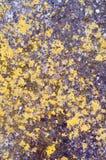 Gekleurde grunge abstracte textuur als achtergrond Stock Foto's
