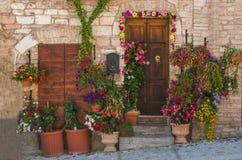 Gekleurde ingang met potten van bloemen Royalty-vrije Stock Foto