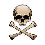 Gekleurde menselijke schedel en gekruiste knekels Stock Foto