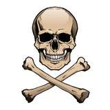 Gekleurde menselijke schedel en gekruiste knekels Stock Afbeelding