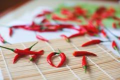 Gekleurde Pepermengeling met rode Spaanse peperpeper Gehele peper en gemalen Spaanse peper op houten lepels Stock Fotografie