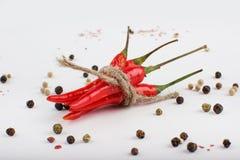 Gekleurde Pepermengeling met rode Spaanse peperpeper Gehele peper en gemalen Spaanse peper op houten lepels Stock Foto's