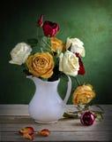 Gekleurde rozen royalty-vrije stock afbeeldingen