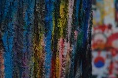 Gekleurde schors van boom stock fotografie