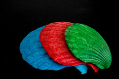 Gekleurde shells Stock Foto's