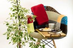 Gekleurde stoel met algemeen en houten dienblad dichtbij installatie Stock Afbeeldingen