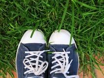 Gekleurde tennisschoenen in het gras Stock Foto's
