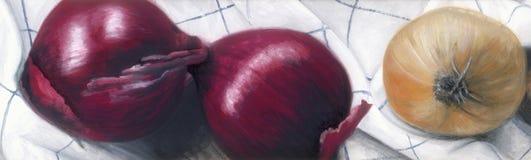 Gekleurde uien Stock Afbeelding